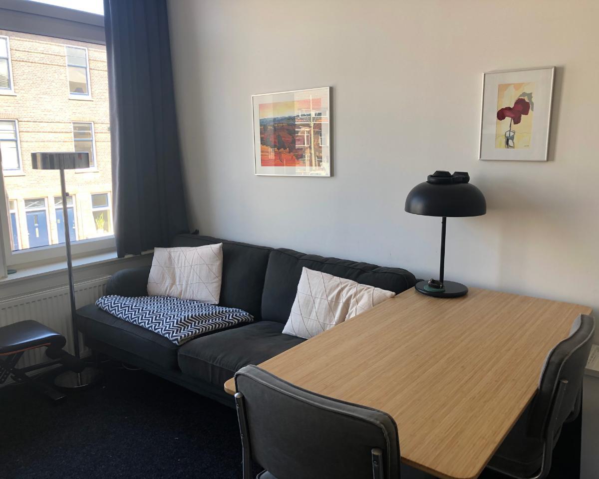 Kamer te huur aan de Brasserskade in Delft