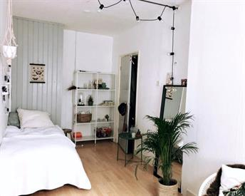 Kamer in Delft, Delfgauwseweg op Kamernet.nl: Vaste kamer in Huize Kippetje!