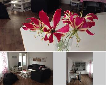 Kamer in Eindhoven, Stratumsedijk op Kamernet.nl: Tijdelijk te huur gemeub app hartje Eindhoven