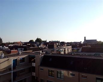 Kamer in Leiden, Pelikaanhof op Kamernet.nl: Peli 115 hospiteert!