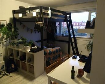 Kamer in Groningen, Celebesstraat op Kamernet.nl: Leuke kamer vrij in gezellig studentenhuis!