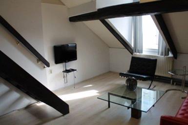 Kamer in Maastricht, Sint Catharinastraat op Kamernet.nl: Appartement gelegen in hartje centrum