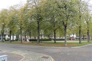 Kamer in Maastricht, 5e Meistraat op Kamernet.nl: Gerenoveerde woning in de geliefde wijk Scharn