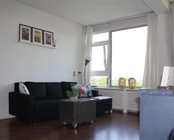 Kamer in Haarlem, Van Leeuwenhoekstraat op Kamernet.nl: Mooi gerenoveerd appartement in Haarlem