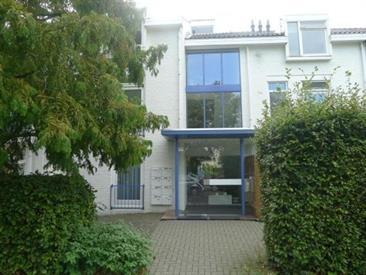 Kamer in Maastricht, Dokter van Kleefstraat op Kamernet.nl: Sfeervol appartement gelegen op de tweede etage