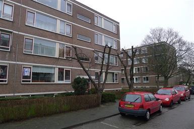Kamer in Rotterdam, Wilbertoord op Kamernet.nl: In de rustige, groene wijk IJsselmonde