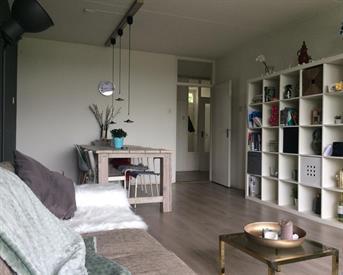 Kamer in Groningen, Avondsterlaan op Kamernet.nl: 3 kamer appartement (ONLY 2 MONTHS)
