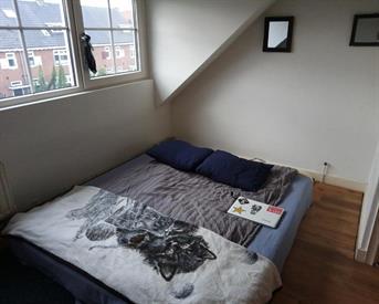 Kamer in Nijmegen, Berg en Dalseweg op Kamernet.nl: Heldere en goed gelegen kamer