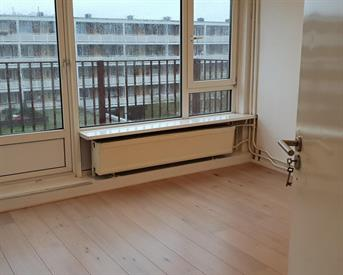 Kamer in Rotterdam, Boeierstraat op Kamernet.nl: 3 rooms are available