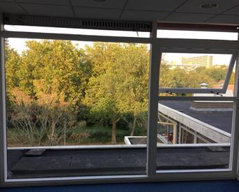 Kamer in Delft, Aart van der Leeuwlaan op Kamernet.nl: Leuke kamer per direct beschikbaar!