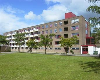 Kamer in Delft, Ricardishof op Kamernet.nl: Penthuysch zoekt nieuwe huisgenot!