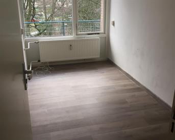 Kamer in Tilburg, Professor Cobbenhagenlaan op Kamernet.nl: Vrouwelijke huisgenote gezocht!