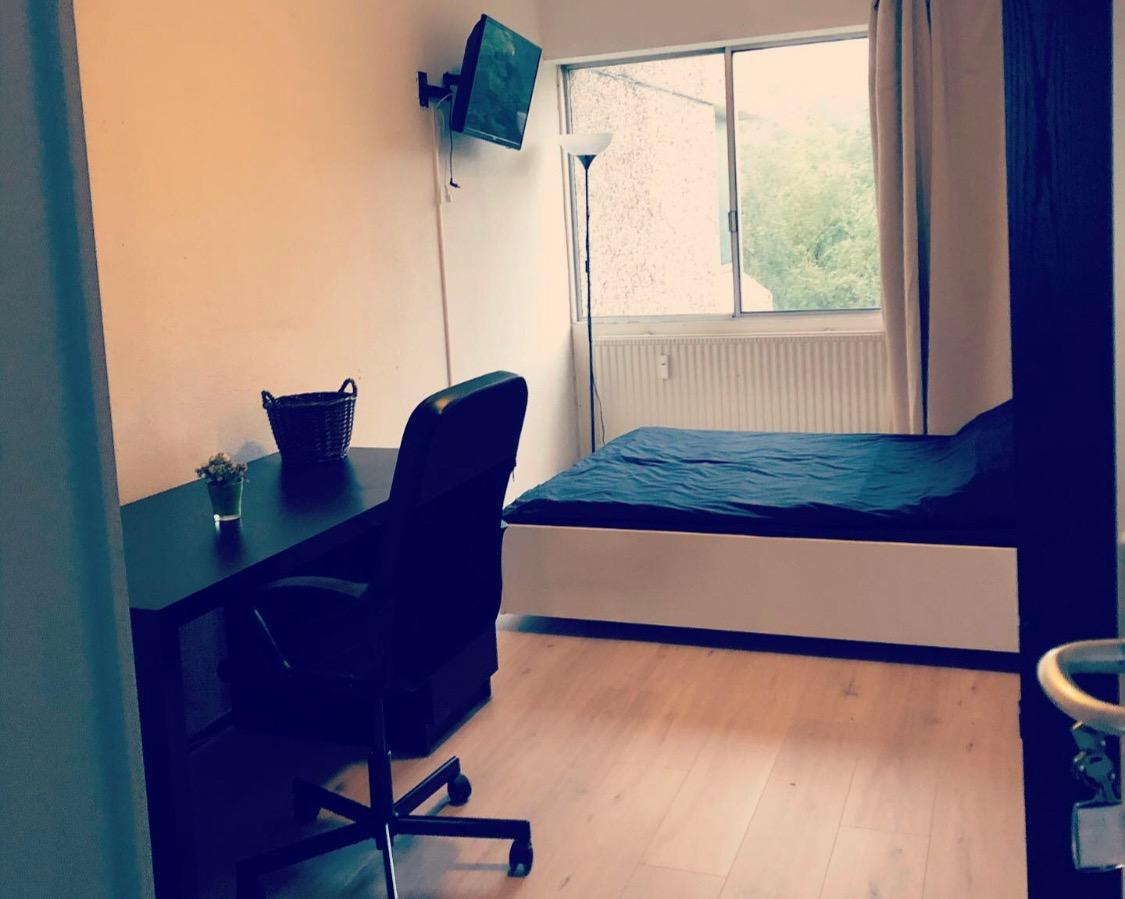 Kamer te huur in de Gouden Leeuw in Amsterdam