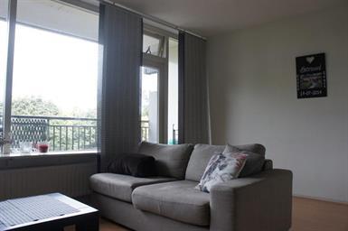 Kamer in Den Bosch, Buitenpepersdreef op Kamernet.nl: Sfeervol appartement te huur aan de Buitenpepersdreef