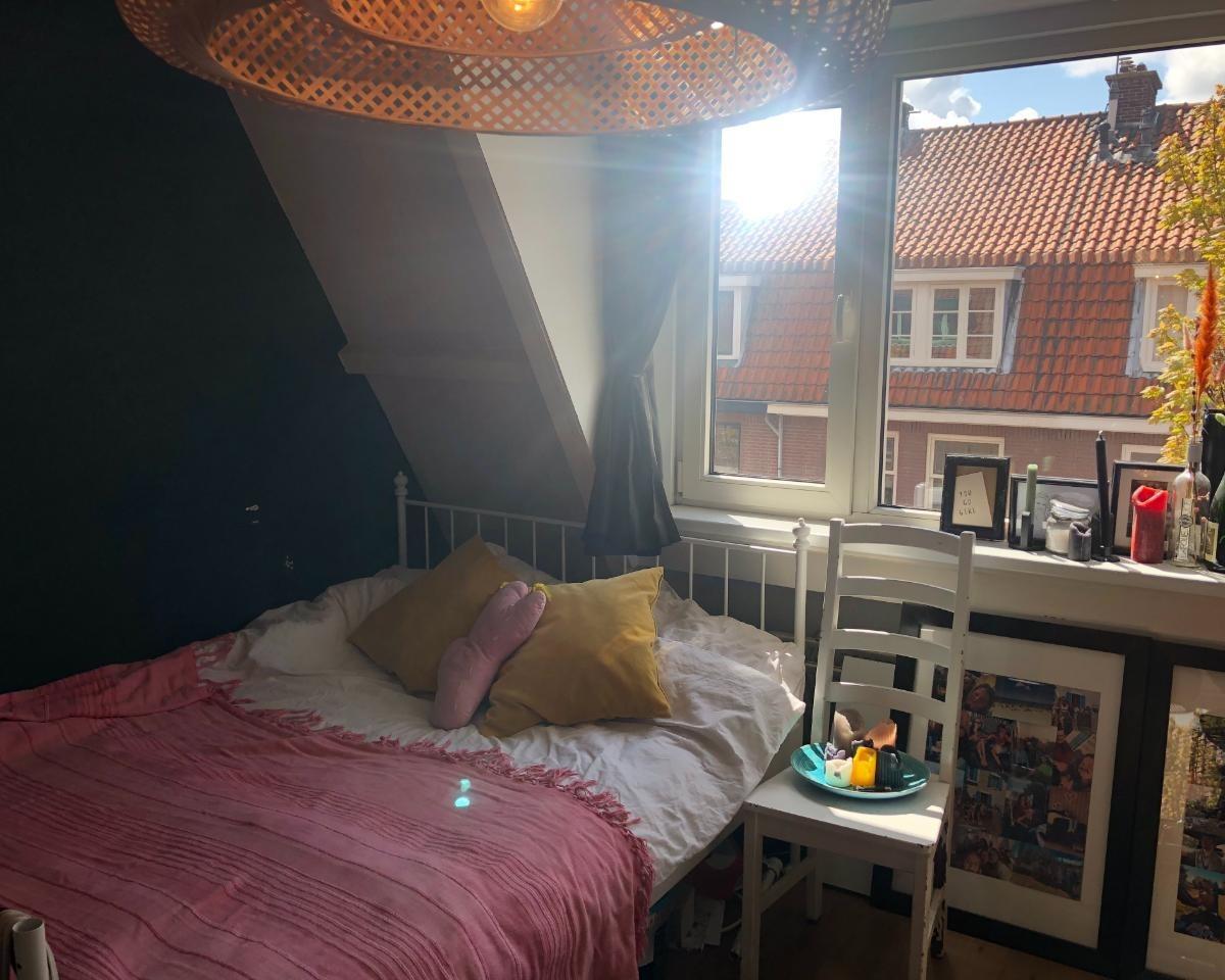Kamer te huur in de Van de Spiegelstraat in Delft