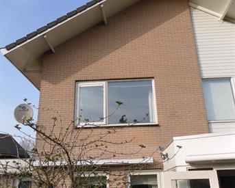 Kamer in Almere, Maandenweg op Kamernet.nl: Kamer met wastafel