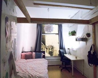 Kamer in Delft, Markt op Kamernet.nl: Mooie kamer hartje Delft
