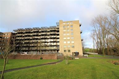 Kamer in Alkmaar, Tuinderspad op Kamernet.nl: 3-kamer appartement