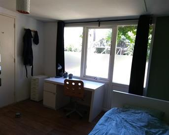 Kamer in Den Haag, Daguerrestraat op Kamernet.nl: Een centraal gelegen kamer met uitzicht op tuin
