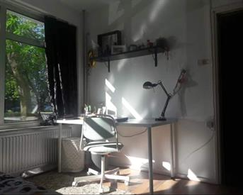 Kamer in Delft, Jacoba van Beierenlaan op Kamernet.nl: Vaste kamer in Huize Cactus (4p meisjeshuis)