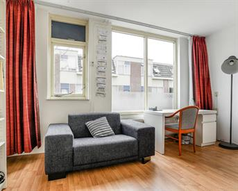 Kamer in Den Haag, Swammerdamstraat op Kamernet.nl: Spacious bright room in a luxurious appartment
