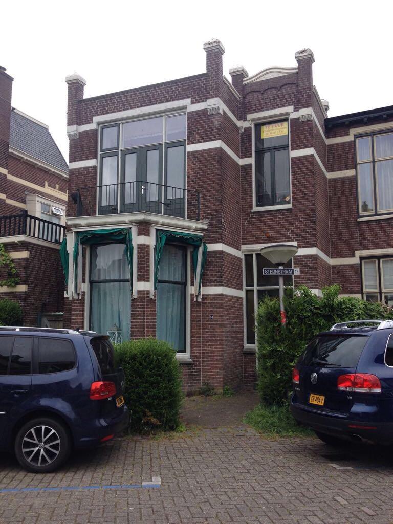 Steijnstraat