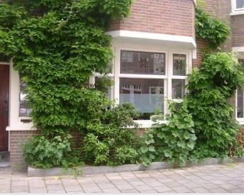 Kamer in Amsterdam, Eemsstraat op Kamernet.nl: Furnished apartment in Amsterdam