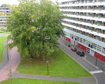 Kamer in Amsterdam, Grubbehoeve op Kamernet.nl: appartement Amsterdam zuid-oost
