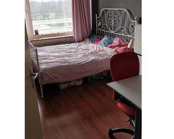 Kamer in Amersfoort, Zangvogelweg op Kamernet.nl: Leuke kamer in amersfoort