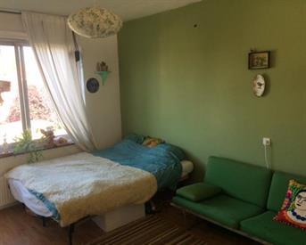 Kamer in Nijmegen, Professor van der Heijdenstraat op Kamernet.nl: Mooie kamer in ruim appartement