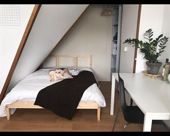 Kamer in Leeuwarden, Leeuwerikstraat op Kamernet.nl: mooie ruime kamer