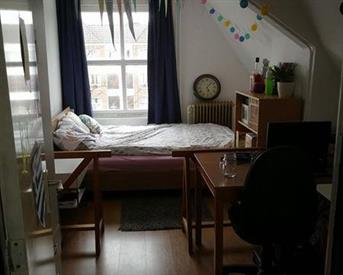 Kamer in Leiden, Utrechtse Veer op Kamernet.nl: Beautiful room with view of the Nieuwe Rijn