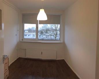 Kamer in Amsterdam, Ruys de Beerenbrouckstraat op Kamernet.nl: Super nette kamer(s) 2 dagen terug klaar reno !