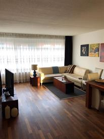 Kamer in Den Haag, Malakkastraat op Kamernet.nl: Apartment to share in Archipel near Peace Palace