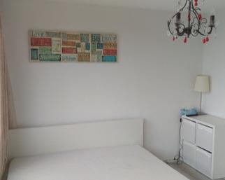 Kamer in Amsterdam, Nicolaas Anslijnstraat op Kamernet.nl: Mooie Ruime kamer voor vegetarische dame