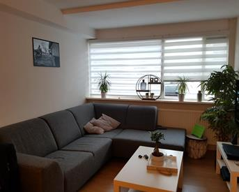 Kamer in Groningen, Turkooisstraat op Kamernet.nl: Mooi appartement met huursubsidie en tuin