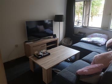 Kamer in Tilburg, Seringenhof op Kamernet.nl: Ruim appartement voor studenten