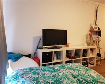 Kamer in Breda, Duivelshoek op Kamernet.nl: Grote kamer met eigen badkamer