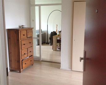 Kamer in Nijmegen, Professor van der Heijdenstraat op Kamernet.nl: Heerlijk appartement op centrale plek