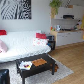 Kamer in Tilburg, Korvelseweg op Kamernet.nl: Appartement met één slaapkamer en groot eigen dakterras!