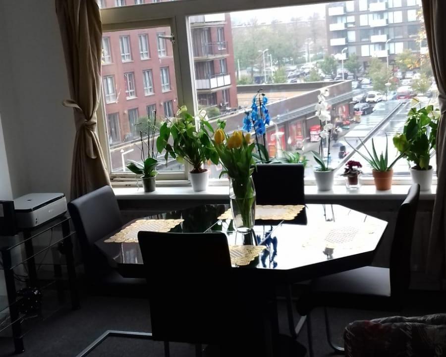Kamer aan Beresteinlaan in Den Haag