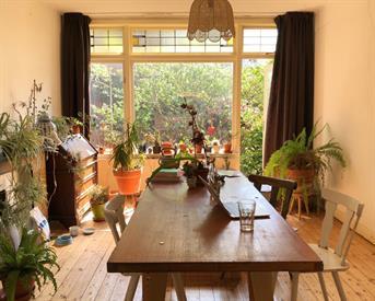 Kamer in Rotterdam, Bergselaan op Kamernet.nl: For cat lovers! Spacious apartment Rdam North
