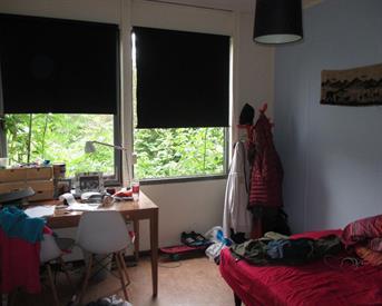 Kamer in Groningen, Van Heemskerckstraat op Kamernet.nl: leuke kamer in meidenhuis voor studente