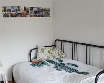 Kamer in Delft, Hendrik Tollensstraat op Kamernet.nl: Gezellige kamer in een net studentenhuis