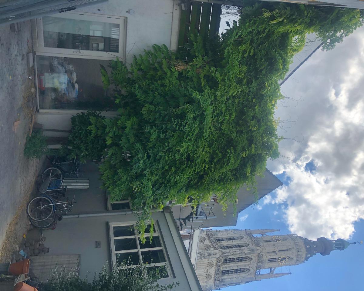 Kamer te huur in de Reigerstraat in Breda