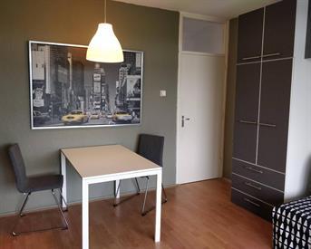 Kamer in Delft, Van Adrichemstraat op Kamernet.nl: Studioappartement in Delft