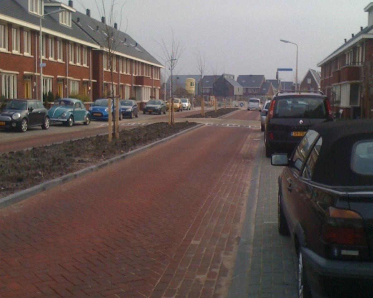 Zwanebloemweg