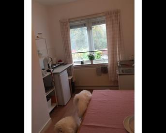 Kamer in Nijmegen, Hindestraat op Kamernet.nl: TE HUUR 2 kamers incl.keukentje met balkon