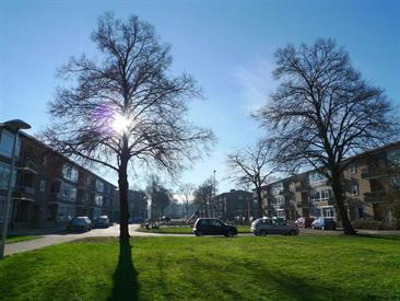 een appartement huren in utrecht | kamernet, Deco ideeën