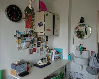 Kamer in Delft, Achterom op Kamernet.nl: Gezellig studentenhuis in hartje Delft